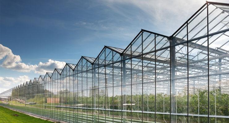 Поликарбонат для сельского хозяйства и садоводства